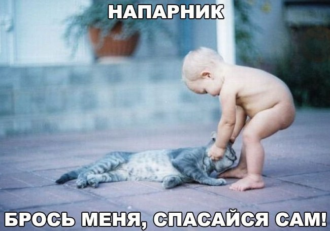 http://2017.f.a0z.ru/11/17-5616185-original-1-.jpg