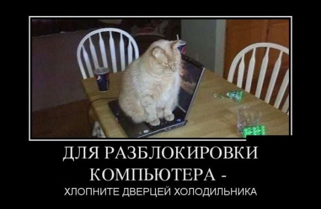 http://files.balancer.ru/cache/forums/attaches/2017/08/640x480/05-5253693-original.jpg