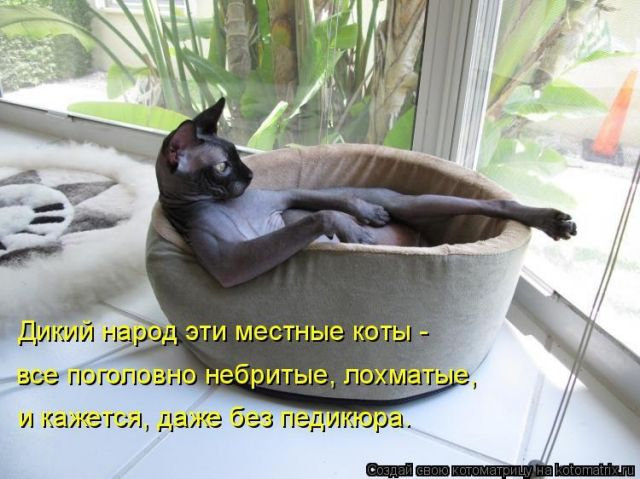 http://files.balancer.ru/cache/forums/attaches/2017/08/640x480/24-5314653-fdwsmhcneww.jpg
